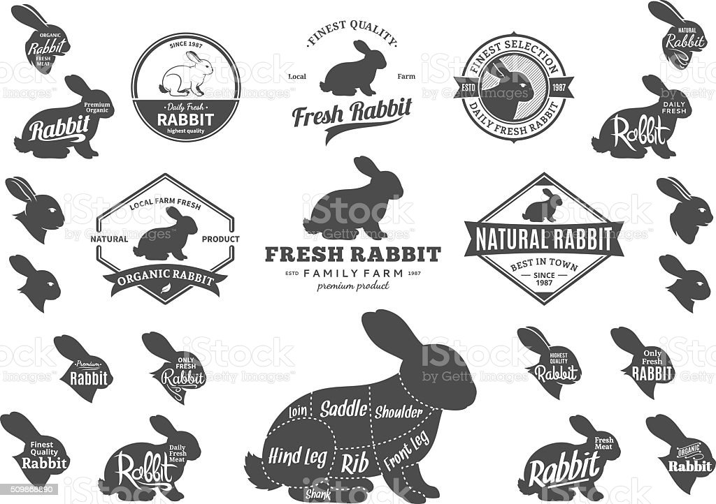 Vector Rabbit Labels, Icons, Charts and Design Elements vector art illustration