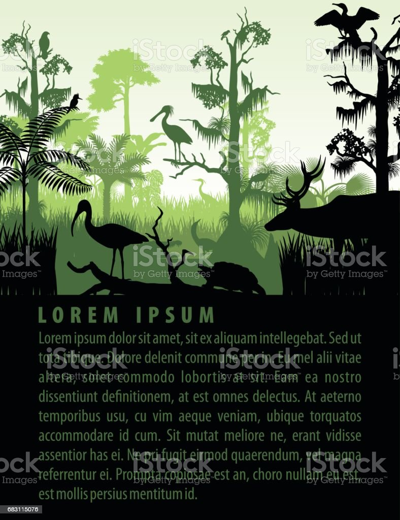 vector rainforest wetland silhouettes in sunset design template with heron, deer, gator, ibis. turtle, kingficher and cormorant vector art illustration