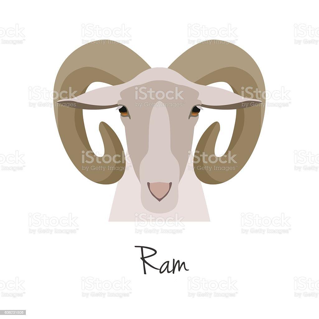 Vector ram head isolated. Flat, cartoon style object vector art illustration