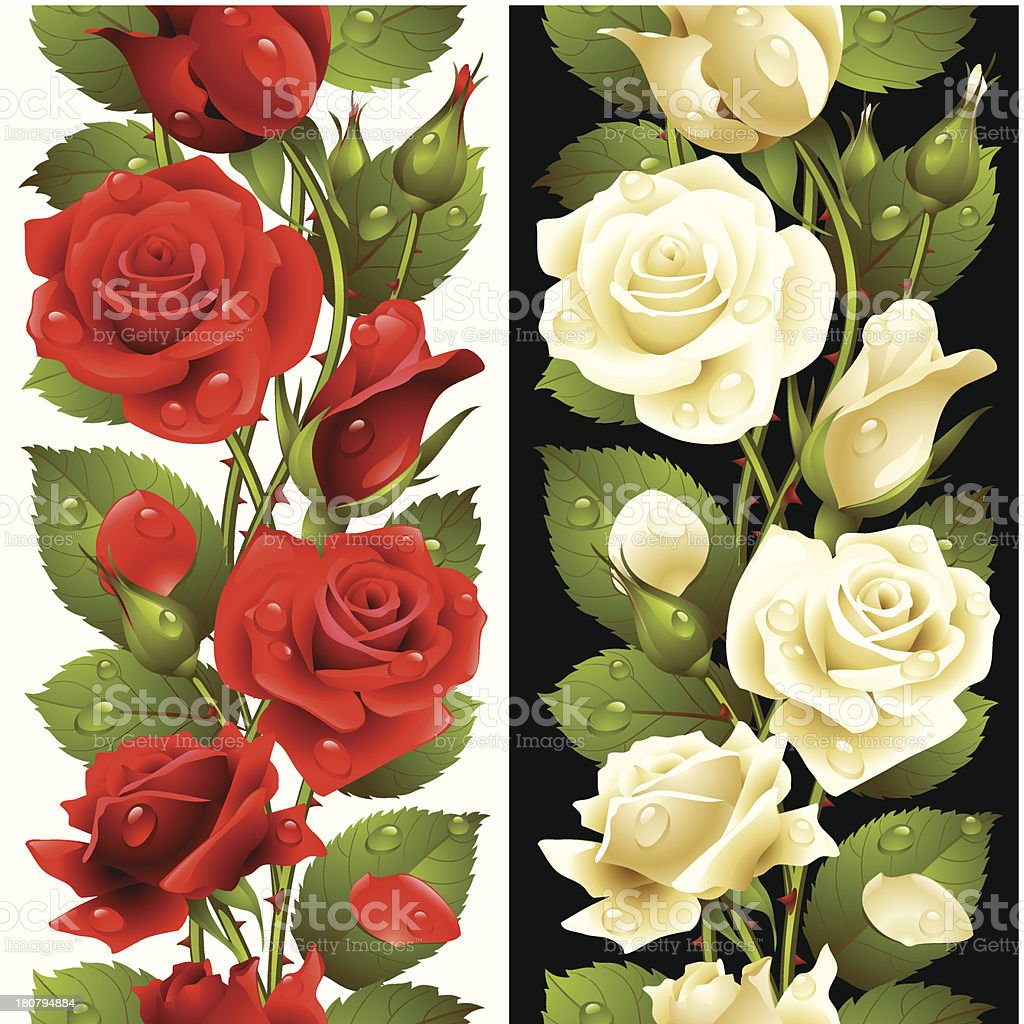 Vector red and white rose vertical seamless pattern royalty-free stock vector art
