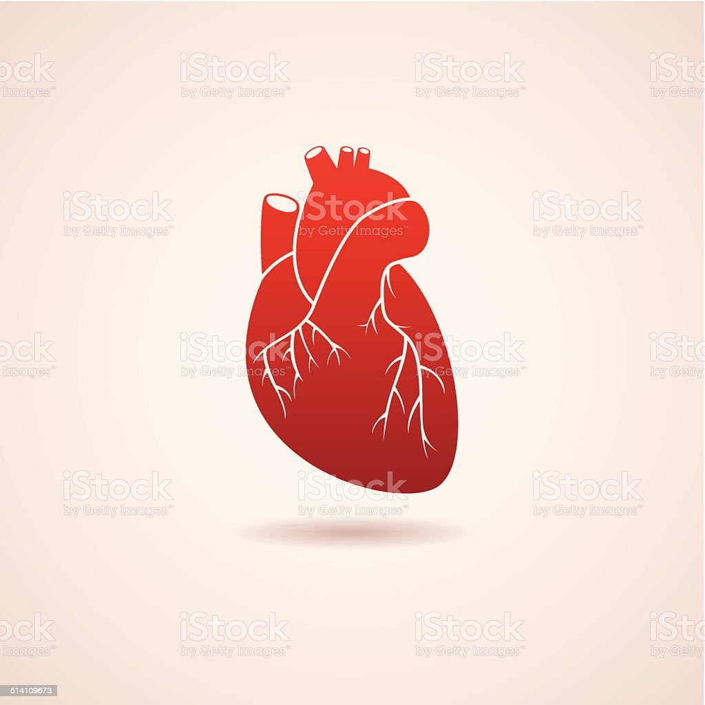vector red human heart icon vector art illustration