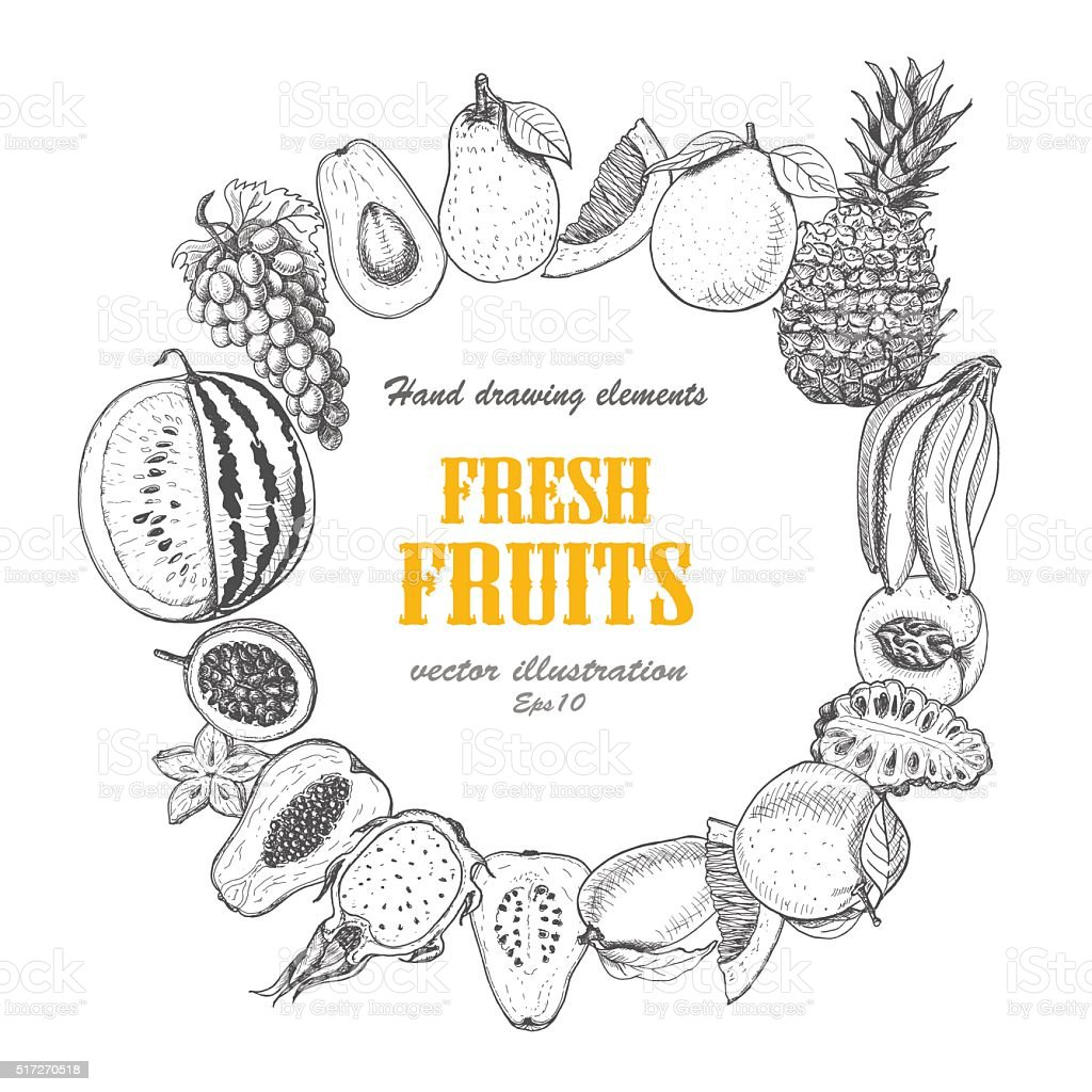 Vector round frame of fruits vector art illustration