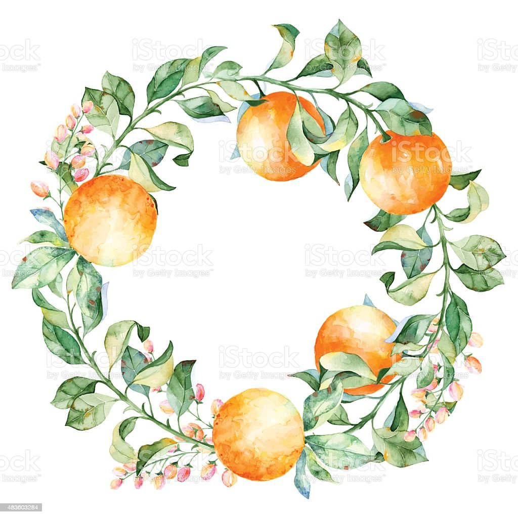 Vector round frame of watercolor orange and flowers. vector art illustration