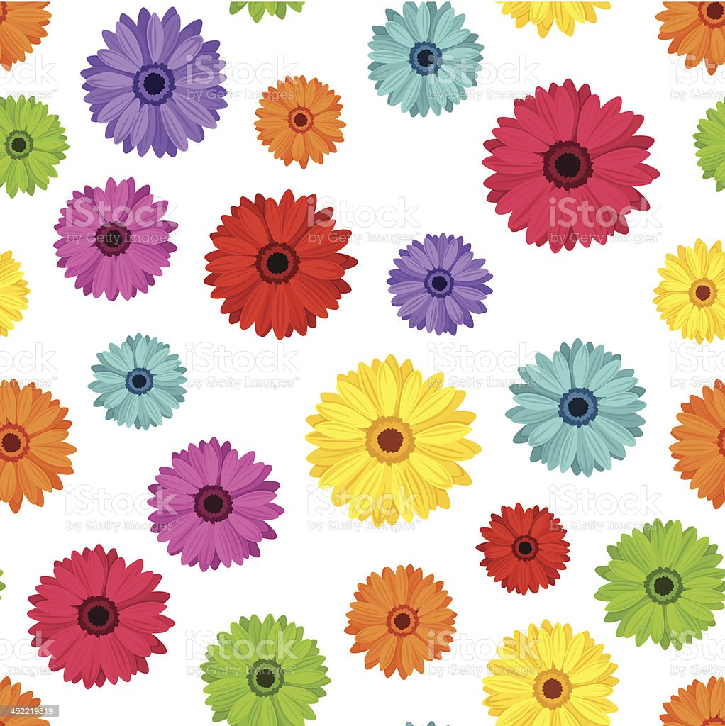 Vector seamless pattern of colored gerbera flowers on white royalty-free stock vector art