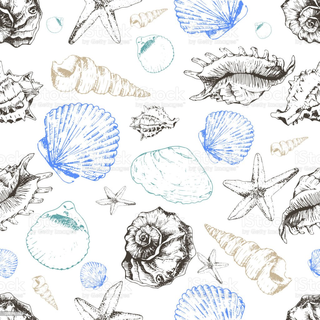 Vector seamless pattern of colored seashells. Hand drawn vector art illustration