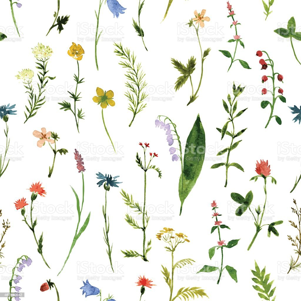 Vector seamless pattern of different colorful flowers vector art illustration