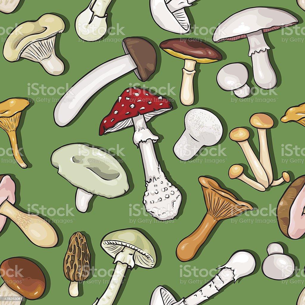 Vector Seamless Pattern of Mushrooms royalty-free stock vector art