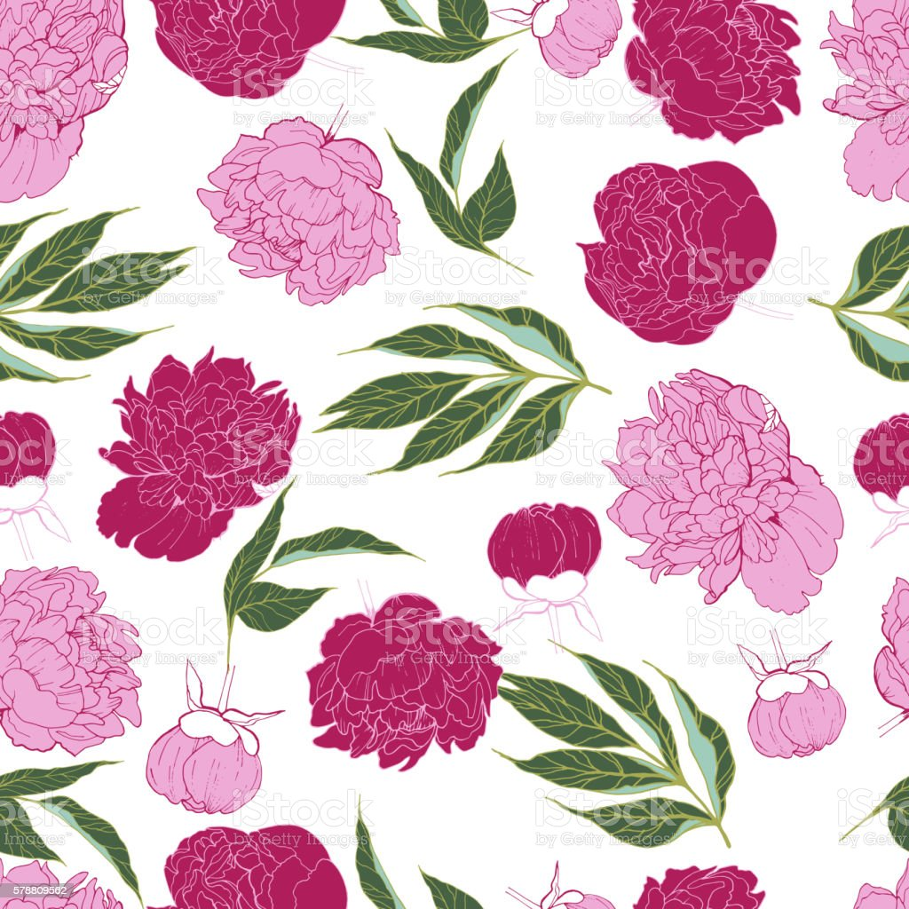 Vector seamless pattern of peony blossom in trendy pink color. vector art illustration