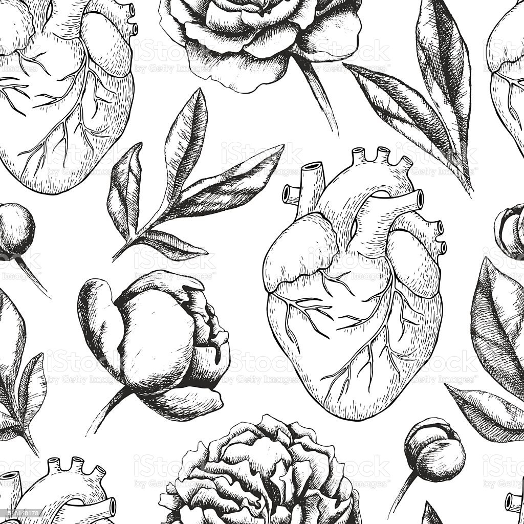 Vector seamless pattern with anatomical human heart and botanica vector art illustration