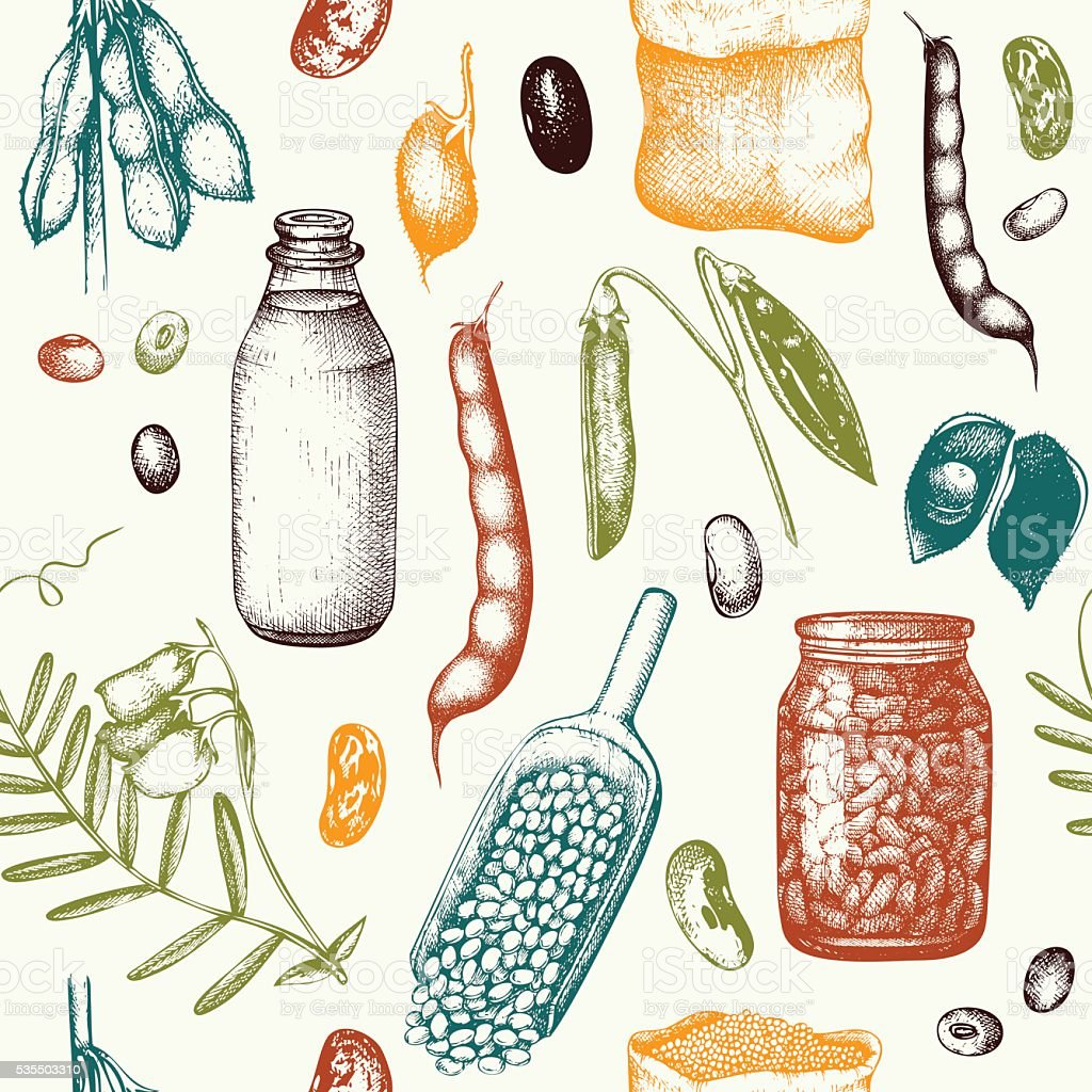 Vector seamless pattern with ink hand drawn legume crops sketches. vector art illustration