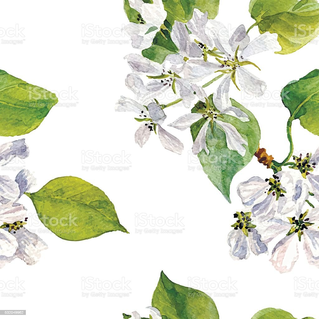 vector seamless pattern with watercolor apple tree flowers vector art illustration