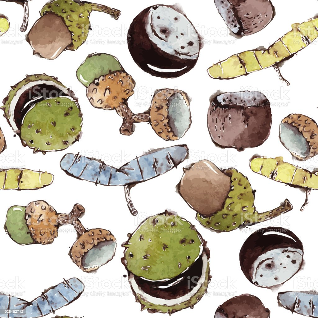 Vector Seamless Pattern with Watercolor Seeds and Nuts vector art illustration