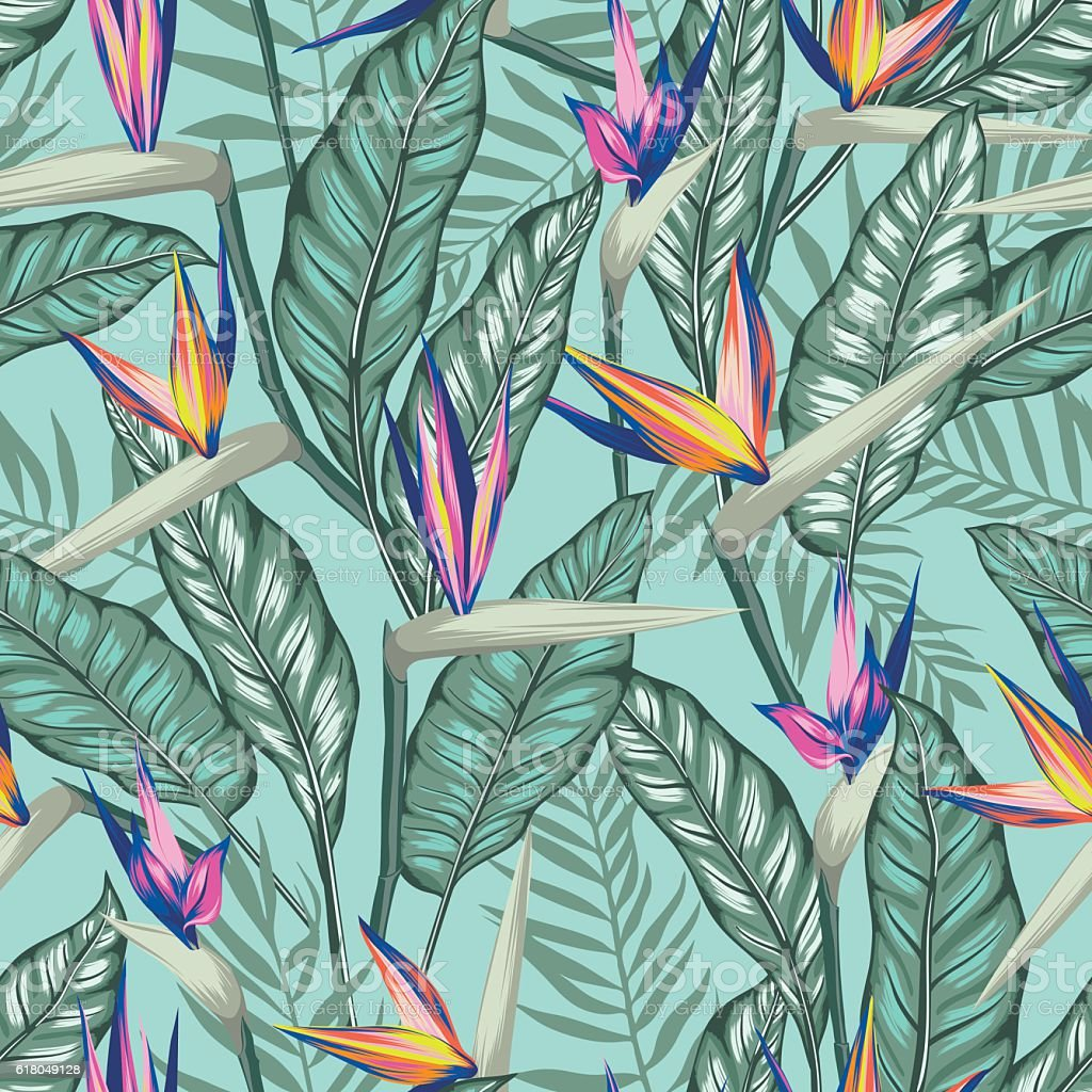 vector seamless tropical bird of paradise plant pattern with leaves vector art illustration
