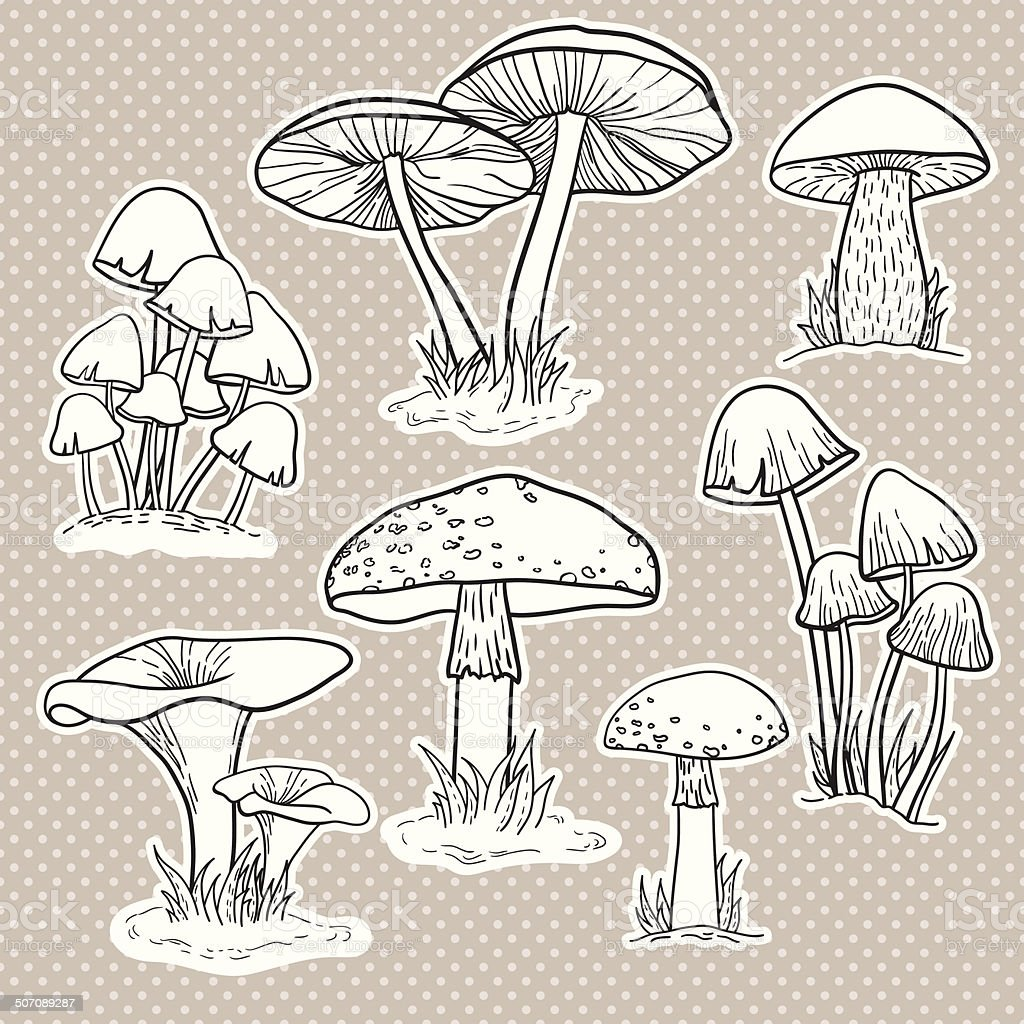 Vector set with mushrooms vector art illustration