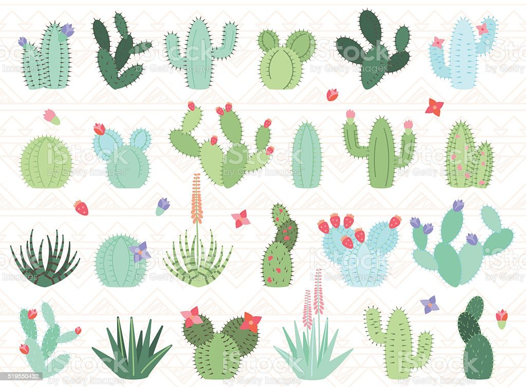 Vector Set of Cactus and Succulent Plants vector art illustration