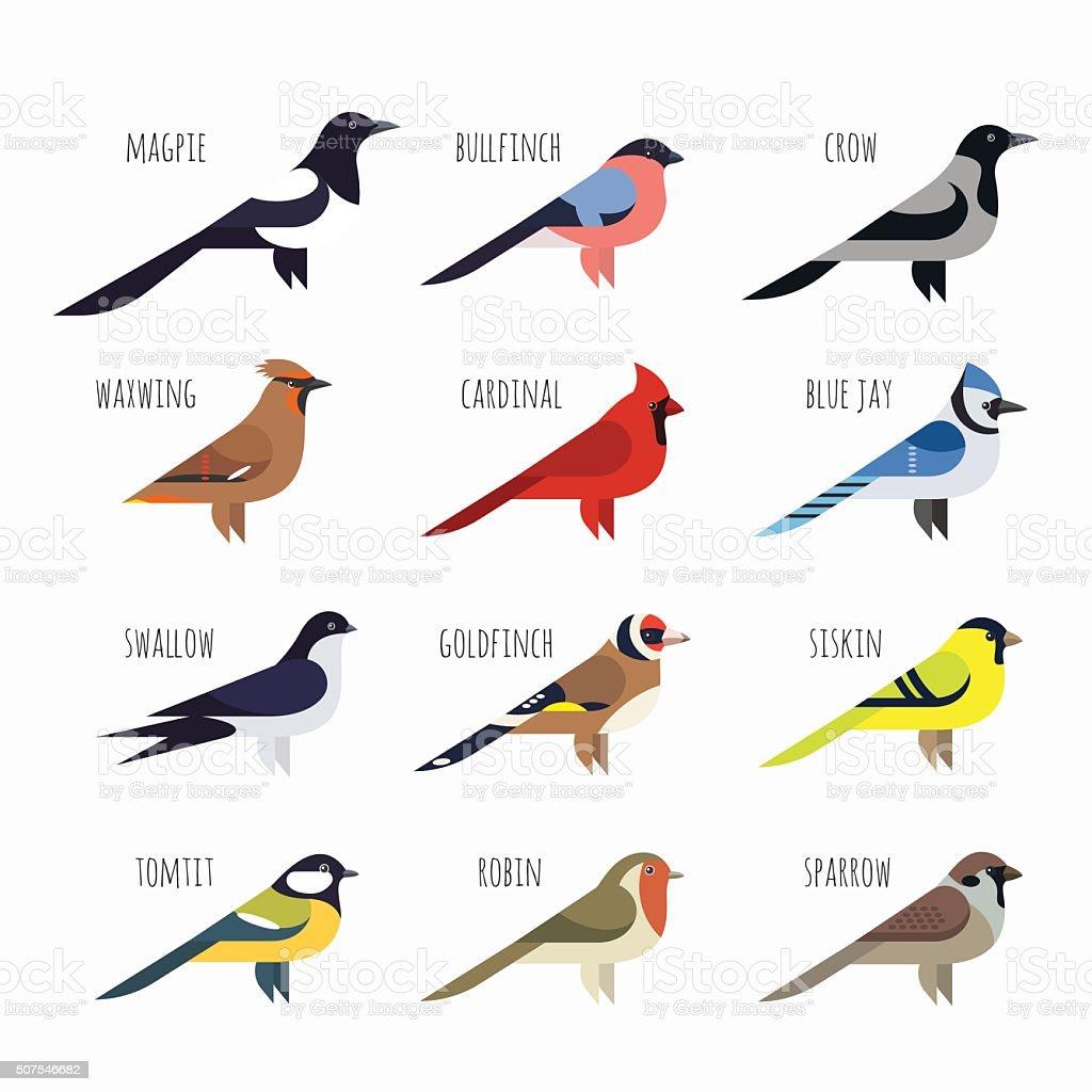 Vector set of Colorful bird icons. Cardinal, magpie, sparrow vector art illustration