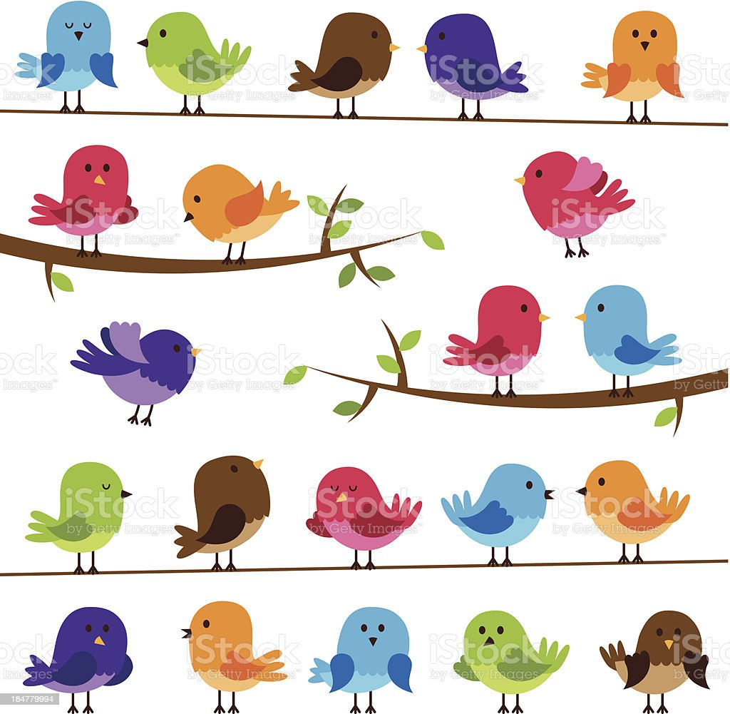 Vector Set of Colorful Cartoon Birds vector art illustration