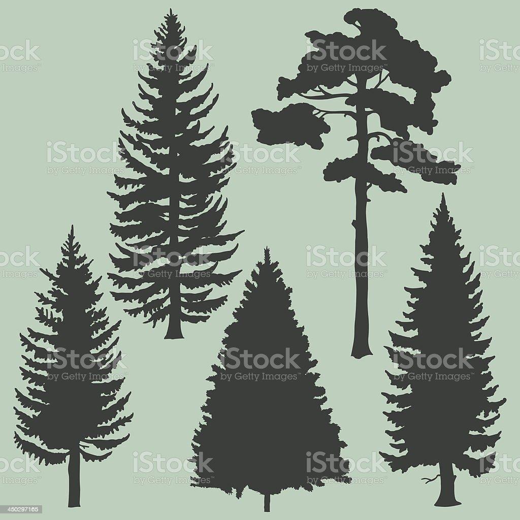 vector set of coniferous trees silhouettes vector art illustration