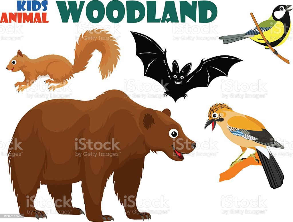 vector set of cute woodland kids animals vector art illustration