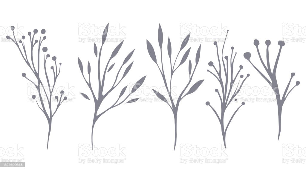 Vector set of delicate leaves and herbs vector art illustration