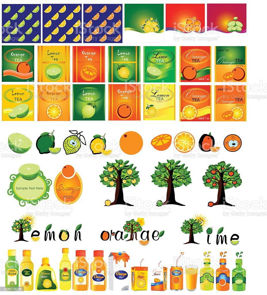 vector set of designs for citrus vector art illustration