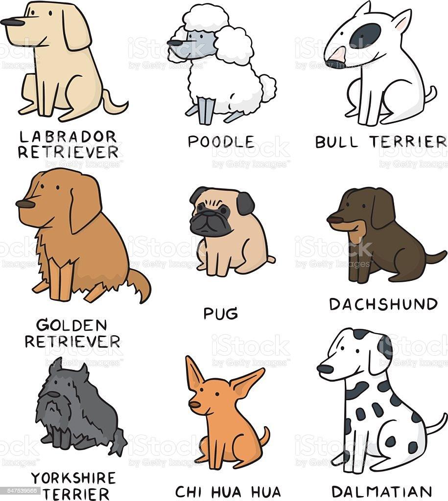 vector set of dog vector art illustration