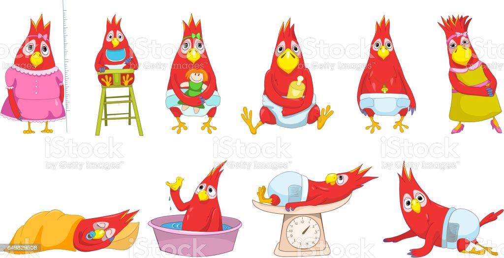 Vector set of funny baby parrots illustrations vector art illustration