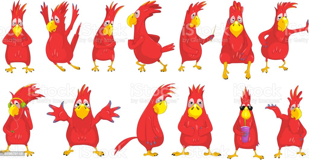 Vector set of funny parrots illustrations vector art illustration