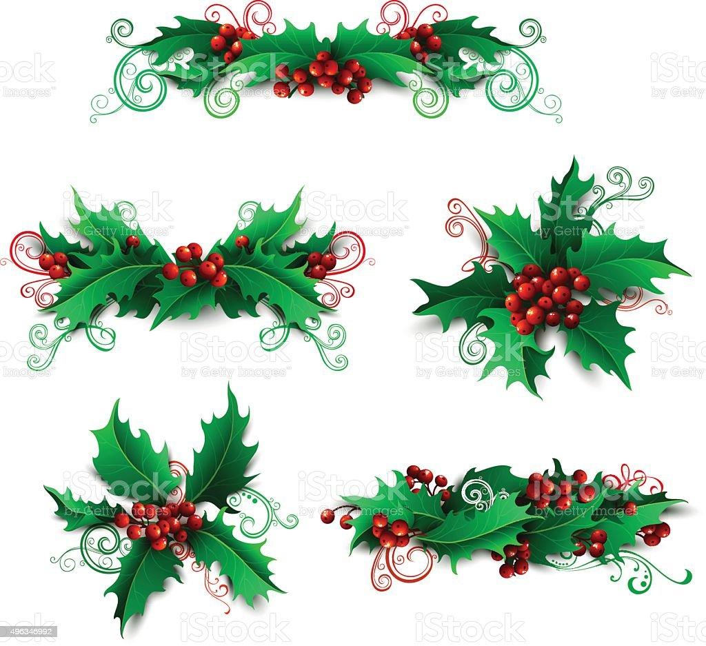 Vector set of holly berries design elements. vector art illustration