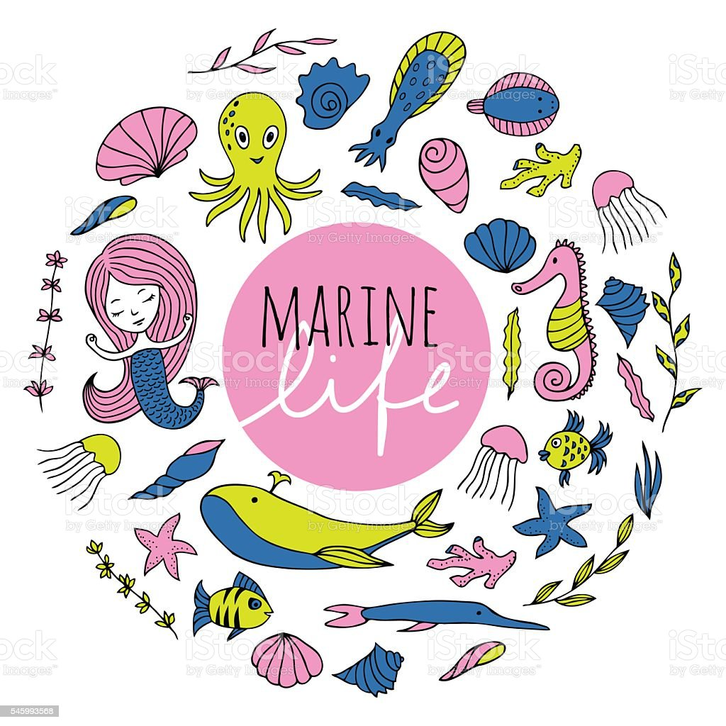 Vector set of marine life. vector art illustration