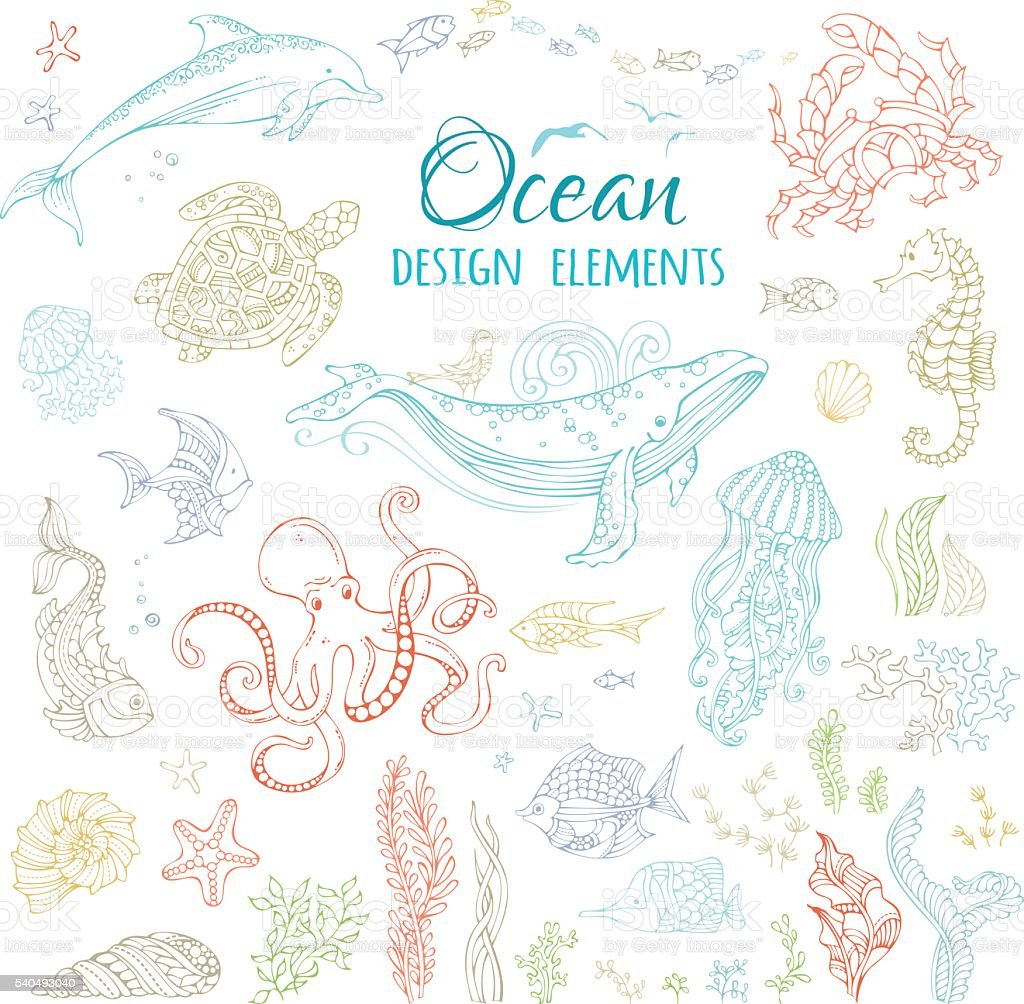 Vector set of ocean animals and plants. vector art illustration
