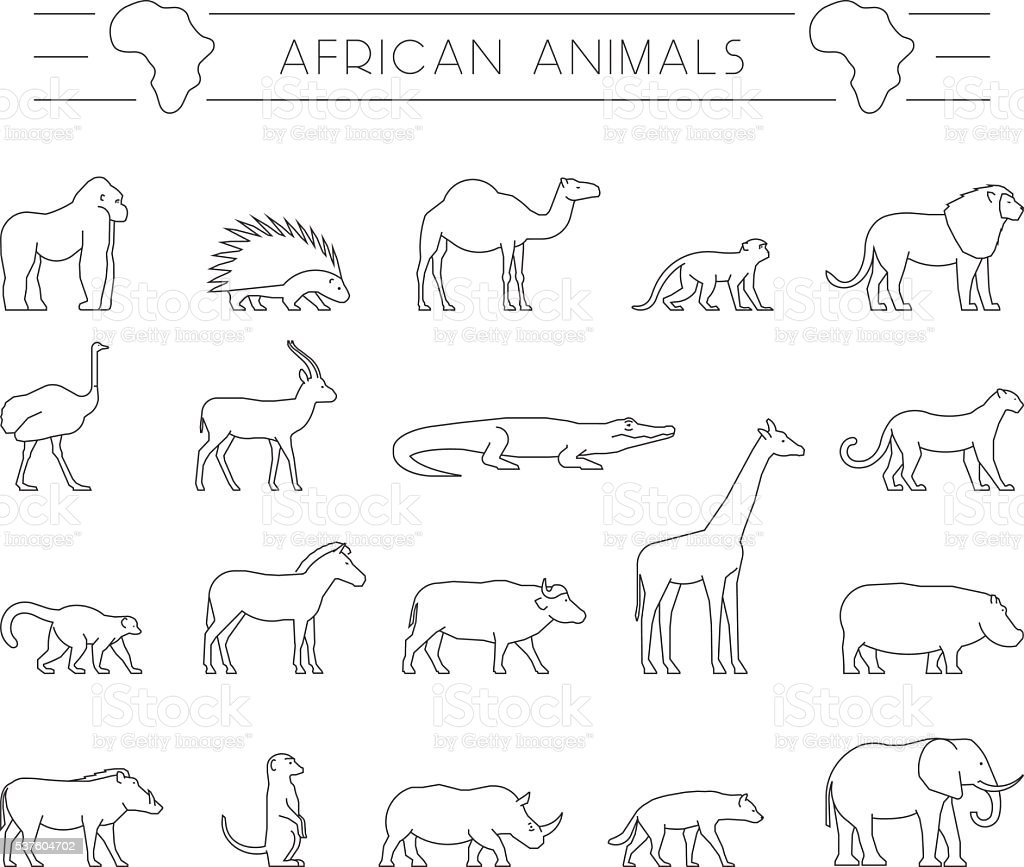 Vector set of outline African animals. vector art illustration