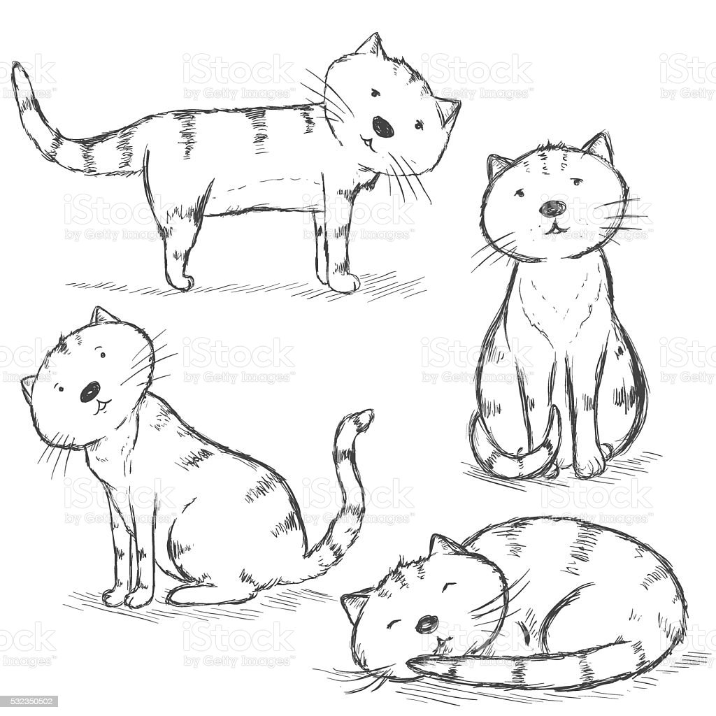 Vector Set of Sketch Cat Characters vector art illustration