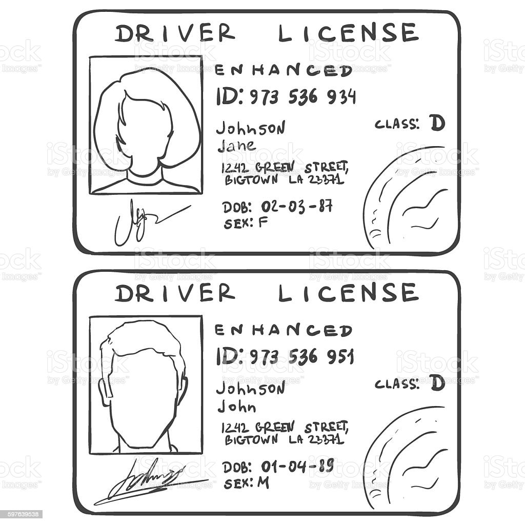 Vector Set of Sketch Driver's Licences. Male and Female Template vector art illustration