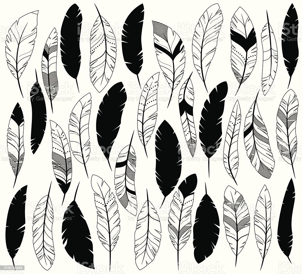 Vector Set of Stylized or Abstract Feathers and Feather Silhouettes vector art illustration