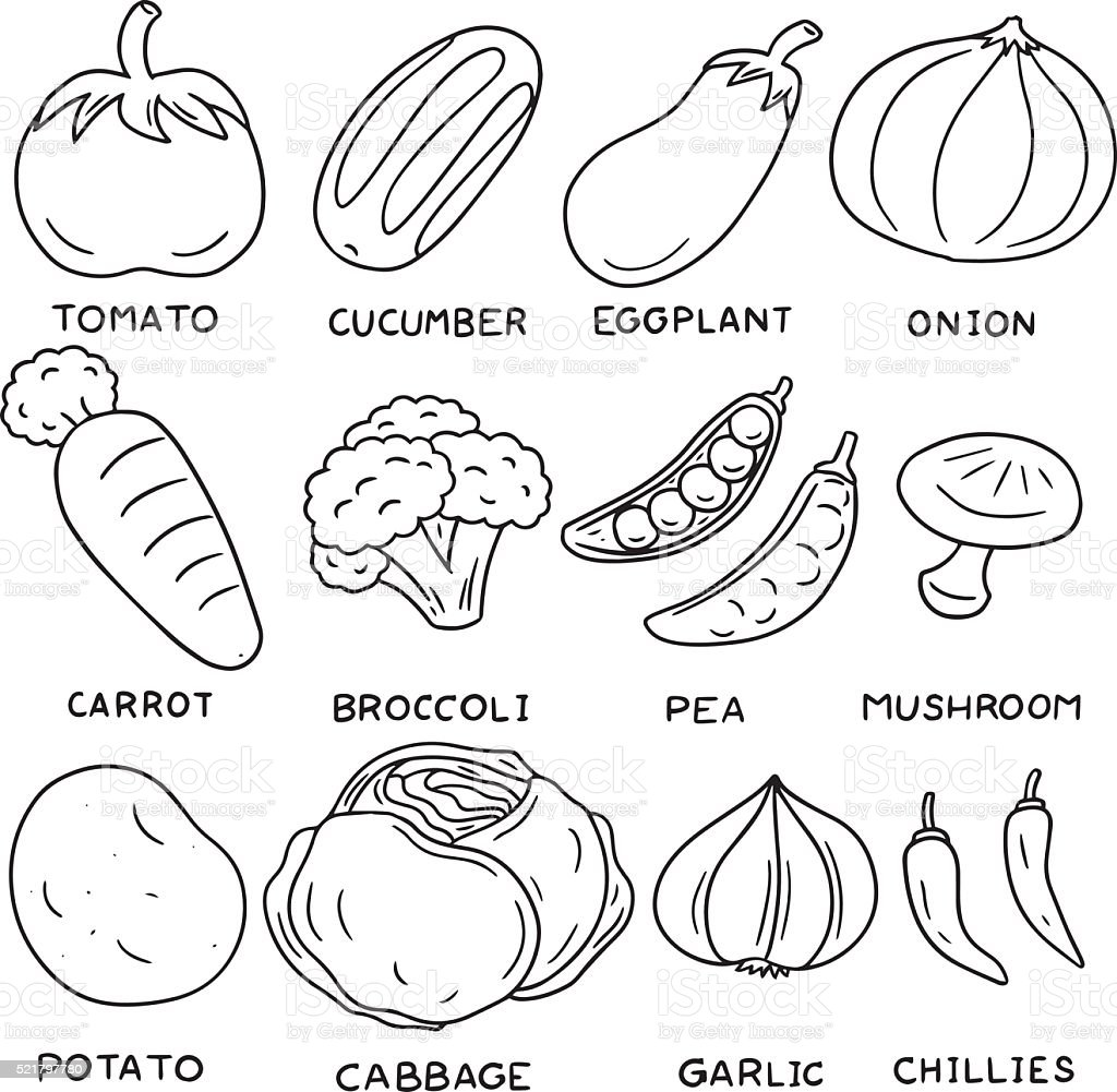 vector set of vegetable vector art illustration
