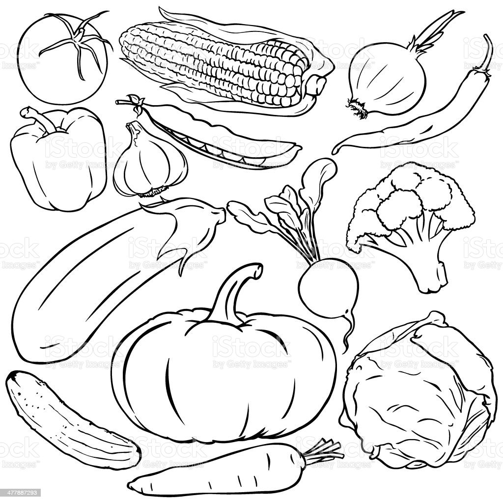 Vector set of vegetables royalty-free stock vector art
