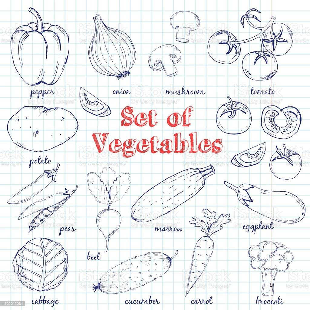 Vector Set of  Vegetables vector art illustration