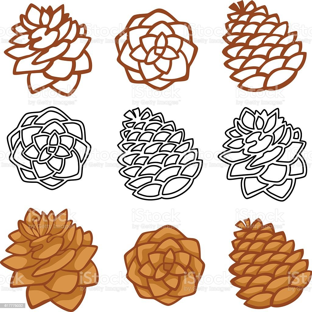 Vector set with pine cones isolated on white vector art illustration