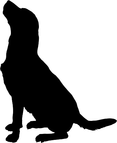 Dog Clip Art Vector Images Amp Illustrations Istock