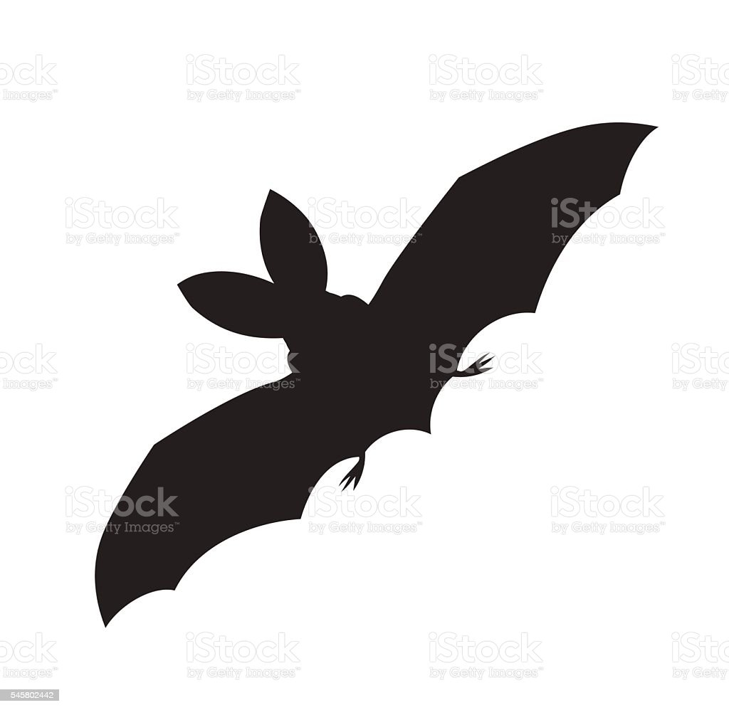 vector silhouette of a flying bat vector art illustration