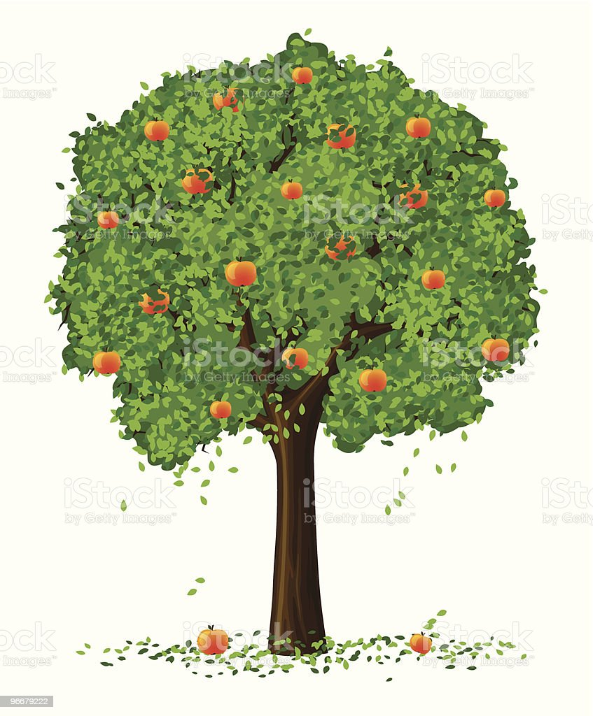 vector silhouette of apple tree with fruits vector art illustration