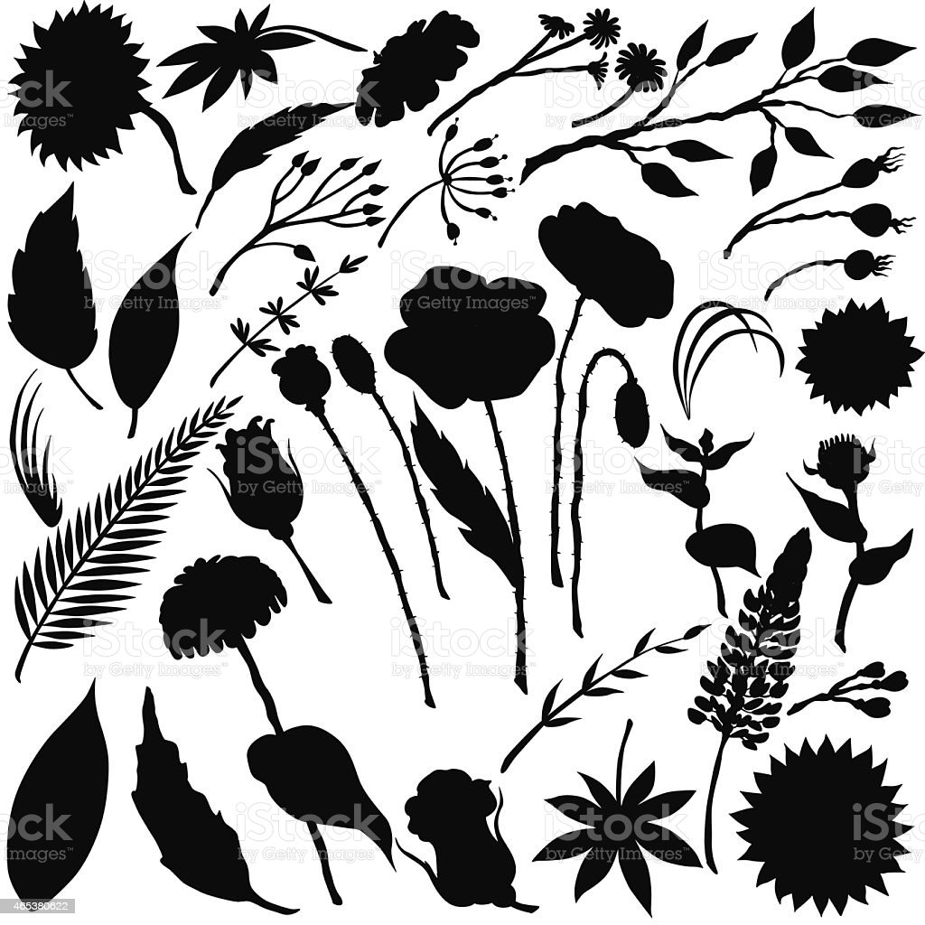 Vector silhouette of different flowers vector art illustration