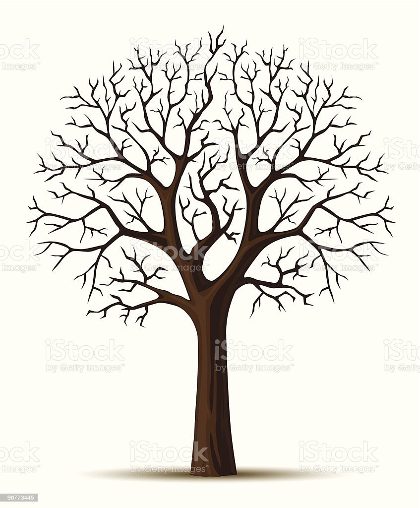 vector silhouette of tree branches cron vector art illustration