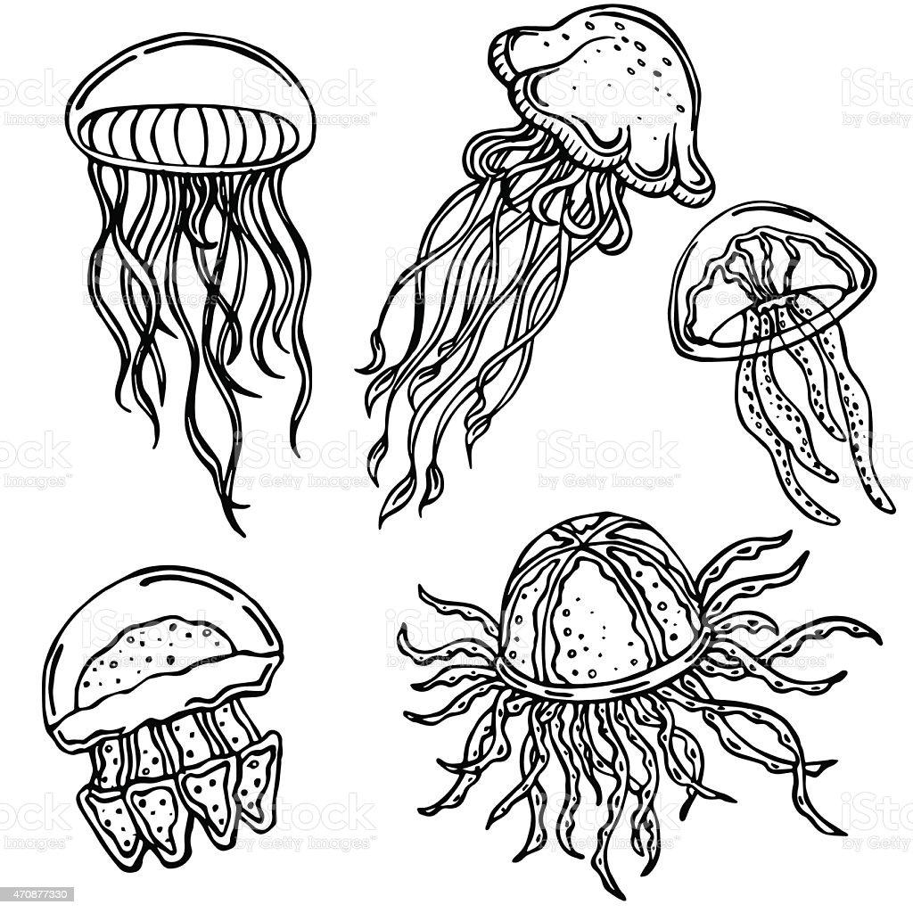 vector silhouette of various jellyfish vector art illustration