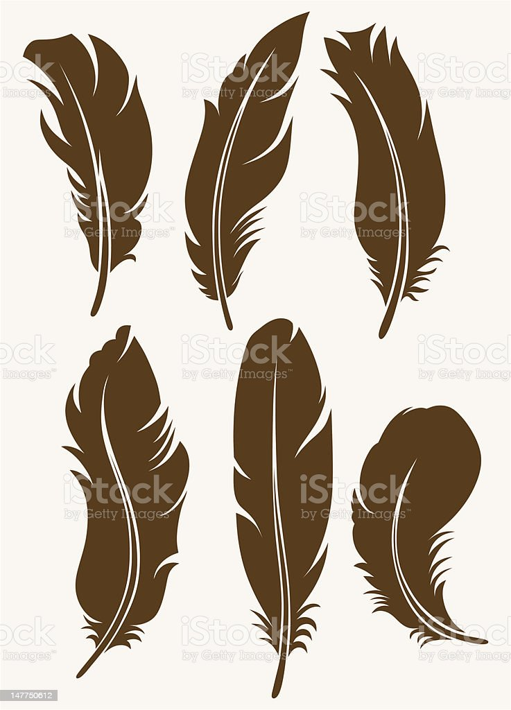 Vector silhouettes of feathers vector art illustration