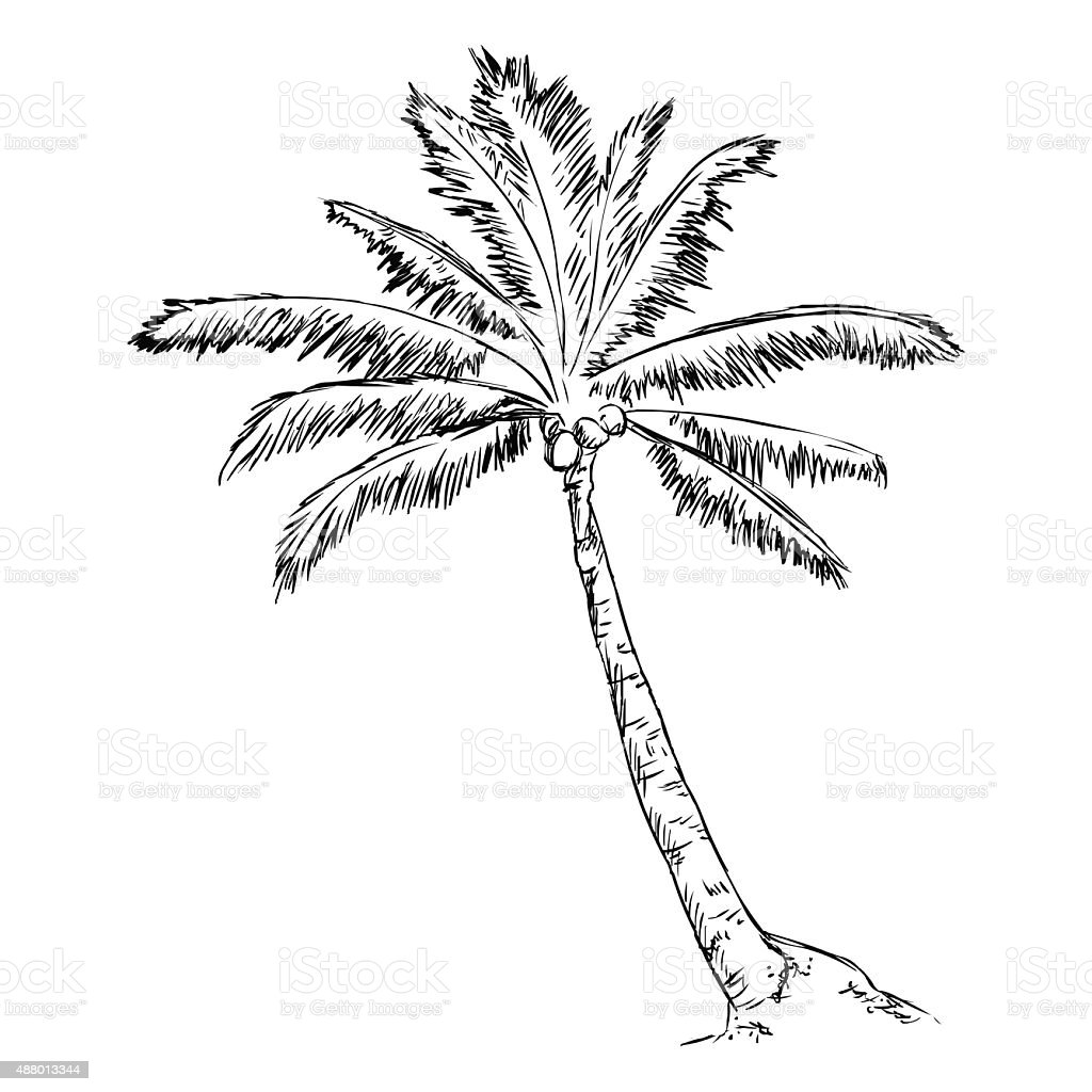 """palm divorced singles Lucille """"lovey"""" handelsman had been married to burt handelsman for 67 years when she decided she wanted a divorce because they own much of worth avenue in palm beach and atlantic avenue in delray beach, the divorce proceedings have turned into a court battle royale in palm beach county circuit court in west palm beach."""