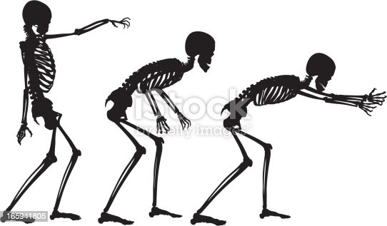 vector skeleton in motion stock vector art 165941805 | istock, Skeleton
