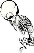 vector skeleton