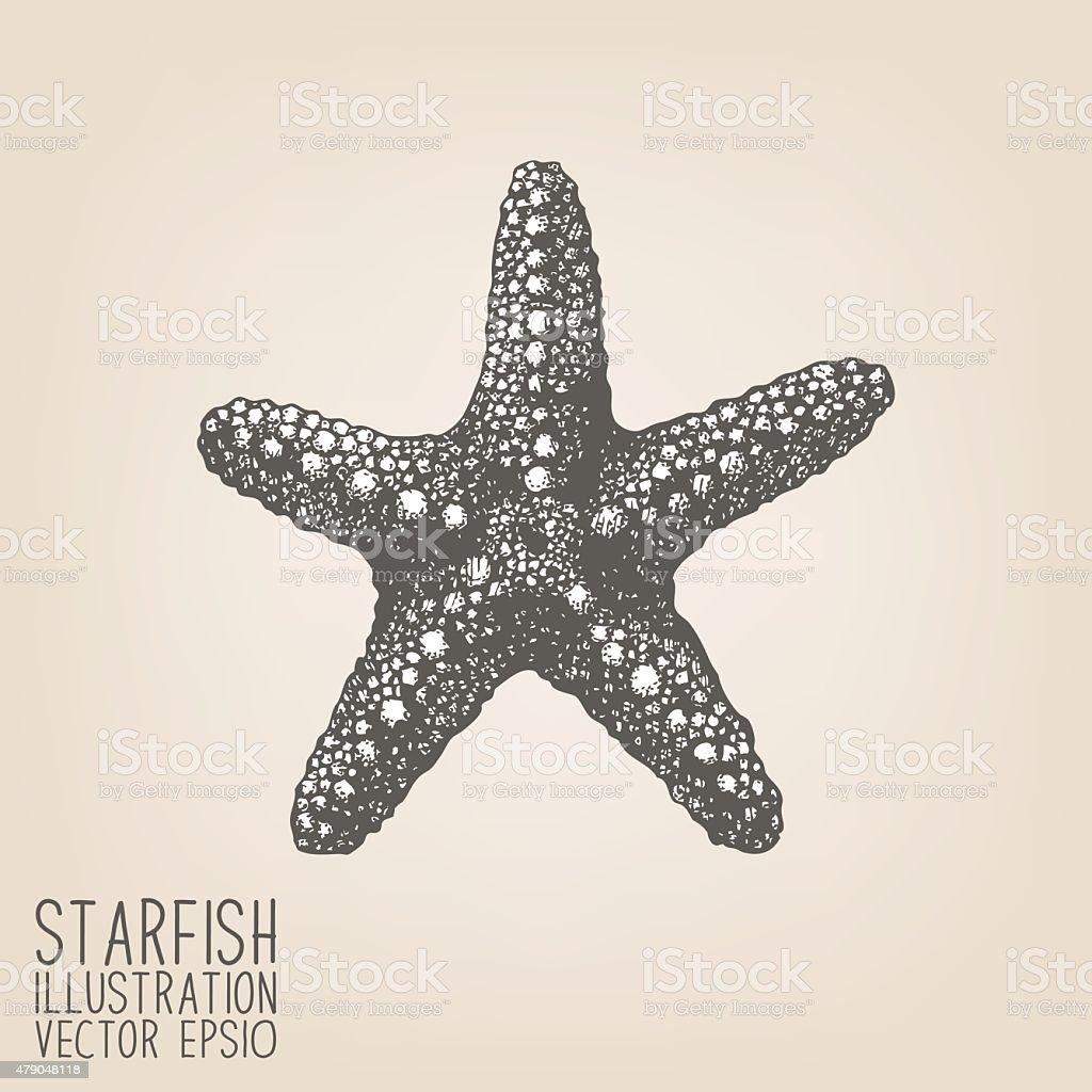 Vector sketch with hand drawn sea star vector art illustration